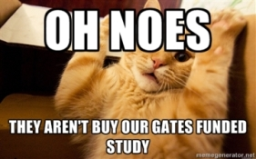 oh noes cat gates study