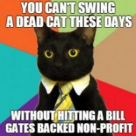 Bill Gates Dead Cat