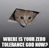 Zero Tolerance Cat