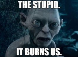 Gollum Stupid Burns Us