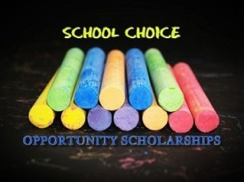 Chalk - School Choice- OPPORTUNITY SCHOLARSHIP PROGRAM TRUTHS