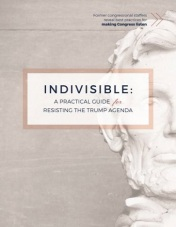 indivisible Guide Facebook