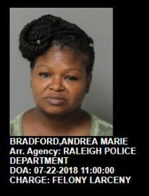 Andrea Marie Bradford - WCPSS - Quiet Epidemic