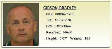 Bradley Gibson - CMS - MCSO - Quiet Epidemic